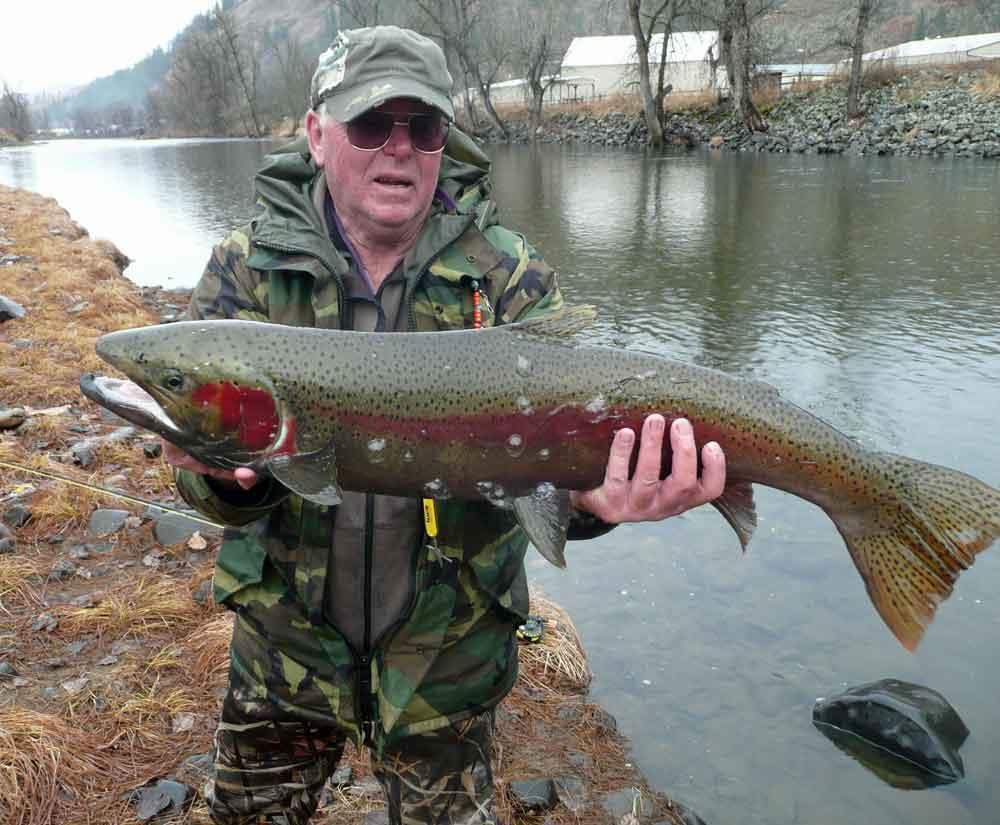 Clearwater River Hunting Trophies Tom Cat Sporting Goods - Kooskia ID - Idaho Whitetail - Kooskia Idaho Area Hunting Pictures -