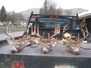 Tom Cat Sporting Goods Hunting Pictures - Tom Cats Idaho Whitetail Idaho Turkeys and Upland Birds